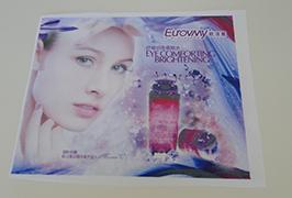 Flag Cloth banner printed by 1.6m (5 feet) eco solvent printer WER-ES160 4