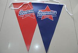 Flag Cloth banner printed by 1.8m (6 feet) eco solvent printer WER-ES1801 2