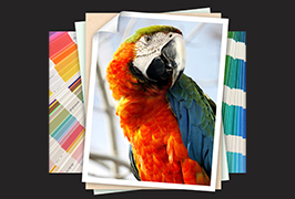 Photo Paper printed by 1.8m (6 feet) eco solvent printer WER-ES1802