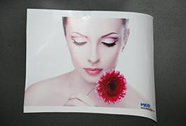 Self Adhesive Vinyl prinited by 3.2m (10 feet) eco solvent printer WER-ES3202